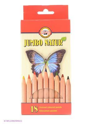 Набор цветных карандашей Jumbo Natur утолщенный корпус (18 цветов) Koh-i-Noor. Цвет: бежевый