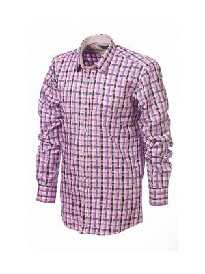 Рубашка BIRIZ. Цвет: лиловый