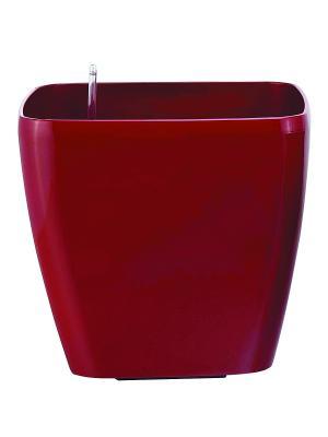 GREEN APPLE Квадратный горшок с автополивом на колесиках 45*45*42 красный. Цвет: красный