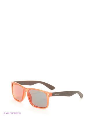 Солнцезащитные очки Polaroid. Цвет: оранжевый, коричневый