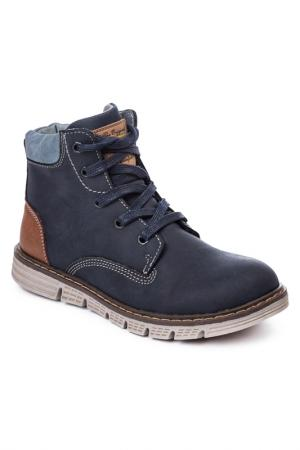Ботинки Scool S'cool. Цвет: темно-синий, коричневый, голуб