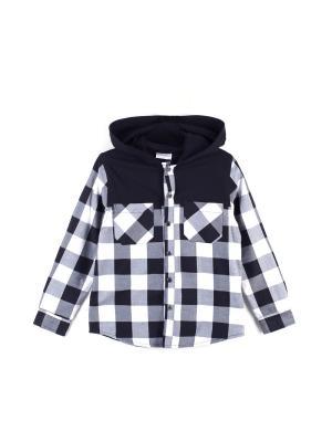 Рубашка Coccodrillo J17136301NOI/черный