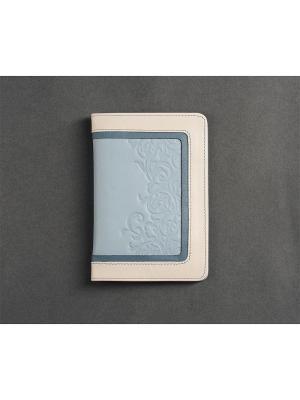 Обложка для паспорта, с отделениемдля карт, Alaska ice Domenico Morelli. Цвет: голубой