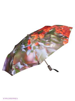 Зонт Stilla s.r.l.. Цвет: зеленый, красный, серый