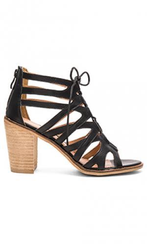 Туфли на каблуке yale Rebels. Цвет: черный