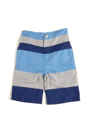 Шорты Appaman. Цвет: голубой, серый, синий