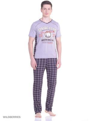 Костюм мужской(футболка, брюки) MARSOFINA. Цвет: коричневый