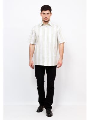 Рубашка BERTHIER. Цвет: светло-зеленый, белый