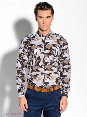 Рубашка Alex DANDY. Цвет: бежевый, голубой, коричневый