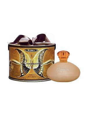 Духи для женщин Шоколад Капучино (Cappuccino pour femme ) жен 100мл SERGIO NERO. Цвет: прозрачный