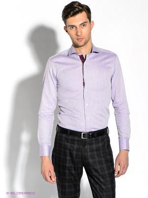 Рубашка Alex DANDY. Цвет: сиреневый