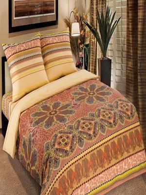 Постельное белье Арт Постель. Цвет: коричневый