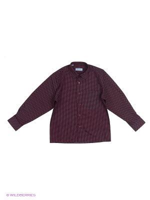 Рубашка Fortunato. Цвет: бордовый