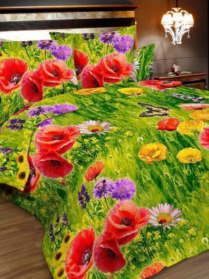 Комплект постельного белья, 1,5-сп, бязь, пододеяльник на молнии Letto. Цвет: зеленый, красный