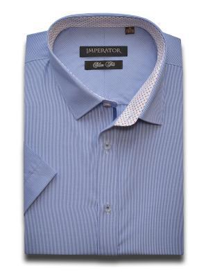 Рубашка Imperator. Цвет: голубой