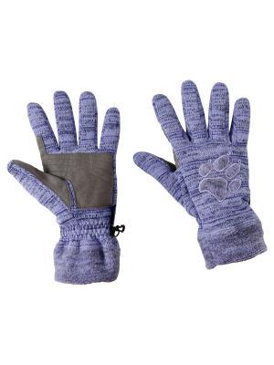 Перчатки AQUILA GLOVE Jack Wolfskin. Цвет: лиловый