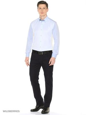 Рубашка Alex DANDY. Цвет: голубой, светло-голубой