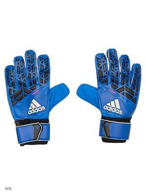 Вратарские перчатки взр. ACE TRAINING BLUE/CBLACK/WHITE/SH Adidas. Цвет: синий