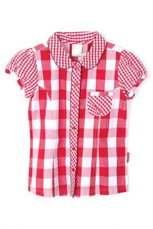 Блузка Coccodrillo. Цвет: красный