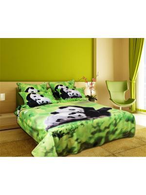 Постельное белье Semeika Pandi 2,0 сп.Euro Buenas Noches. Цвет: зеленый, белый, черный
