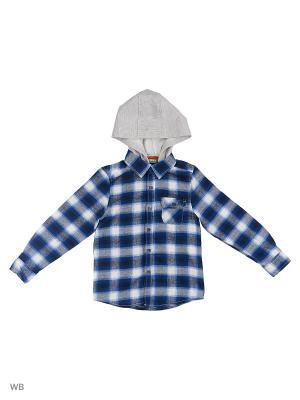 Рубашка Modis. Цвет: серо-голубой, белый