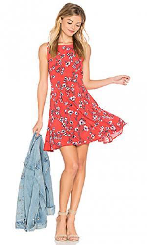 Мини платье sweney cupcakes and cashmere. Цвет: красный