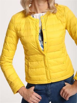 Куртки Top Secret. Цвет: желтый