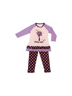 Комплект одежды Модамини. Цвет: фиолетовый, коричневый