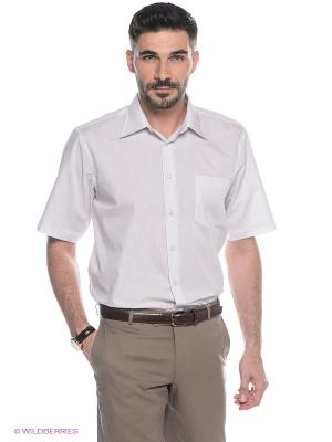 Рубашка Conti Uomo. Цвет: белый, лиловый