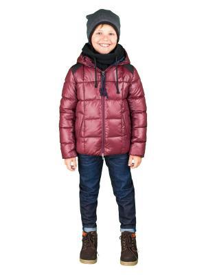 Куртка BOOM. Цвет: бордовый, синий