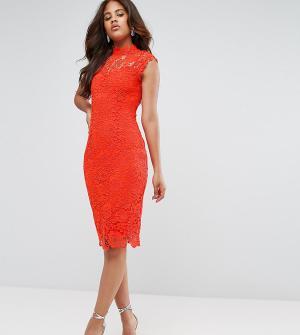 Paper Dolls Tall Ажурное платье-футляр с высоким воротником. Цвет: оранжевый