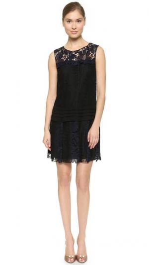 Платье с кружевными слоями Nina Ricci. Цвет: затмение