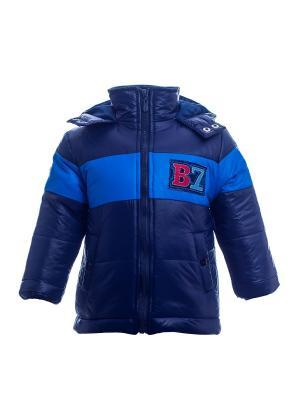 Куртка Bonito kids. Цвет: темно-синий, синий