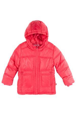 Куртка Coccodrillo. Цвет: оранжевый