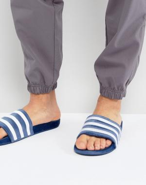 Adidas Originals Синие шлепанцы из бархата Adilette BY9908. Цвет: синий