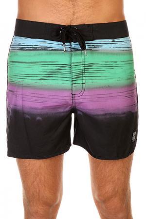 Шорты пляжные  Short Stripe Floyd Black Insight. Цвет: черный,зеленый,фиолетовый