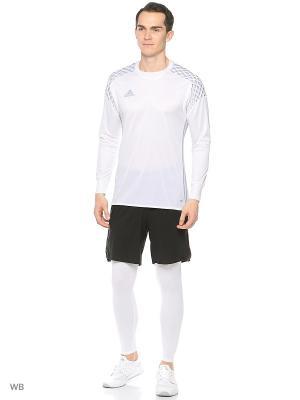 Тайтсы муж. TF BASE TIGHT  WHITE Adidas. Цвет: белый