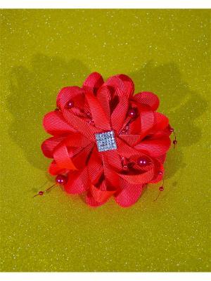 Резинка для волос Bizon. Цвет: красный