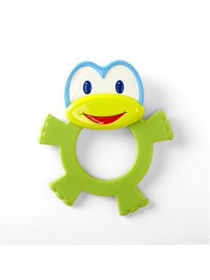 Развивающая игрушка - прорезыватель Лягушонок BRIGHT STARTS. Цвет: зеленый