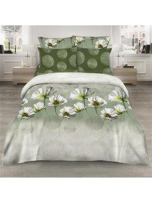 Комплект постельного белья из поплина 2 спальный Василиса. Цвет: зеленый