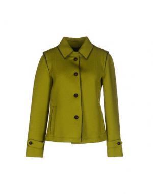 Куртка SCHNEIDERS. Цвет: кислотно-зеленый