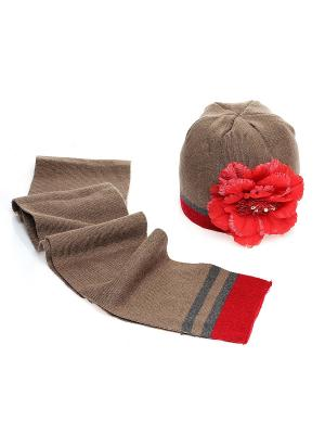 Комплект Modniki. Цвет: коричневый