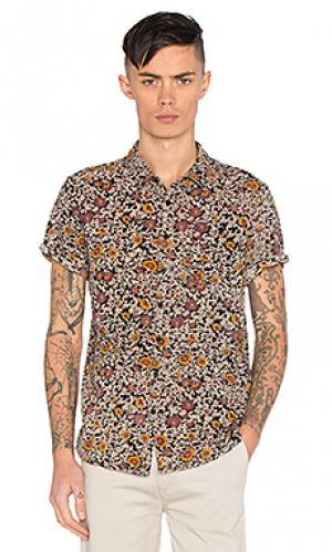 Черная рубашка со цветочным рисунком ROLLAS ROLLA'S. Цвет: черный