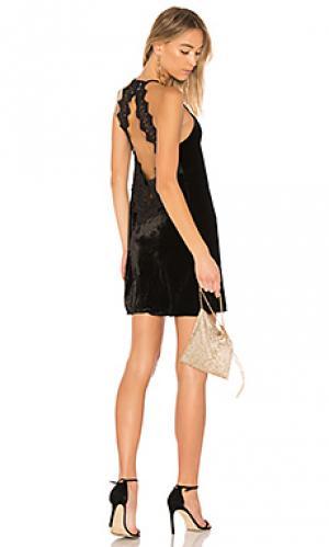 Бархатное платье the soho CAMI NYC. Цвет: черный