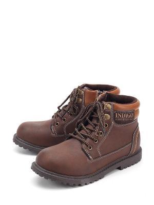 Ботинки Indigo. Цвет: коричневый