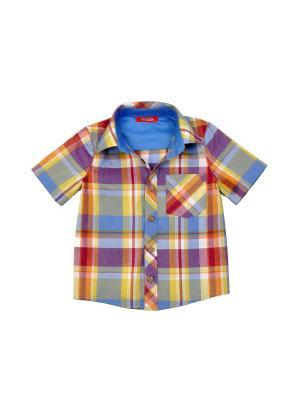 Рубашка VEAS. Цвет: голубой,коралловый,желтый