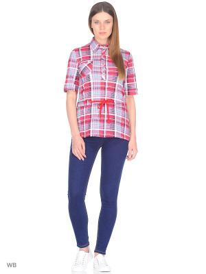 Рубашка ModaGrata. Цвет: серый, красный