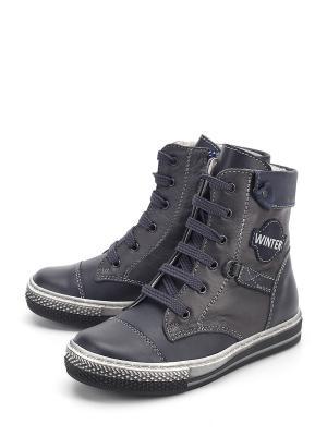 Ботинки PAVLE. Цвет: синий