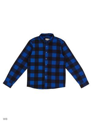 Рубашка  для мальчика Bonito kids. Цвет: синий, черный