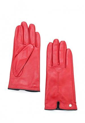 Перчатки Armani Exchange. Цвет: красный